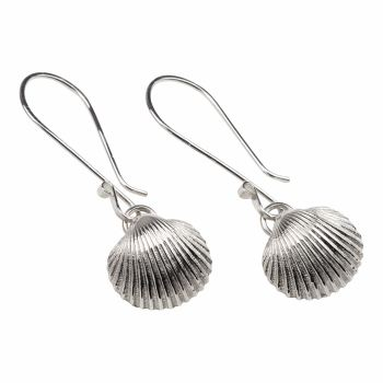 Large Cockle Shell Earrings