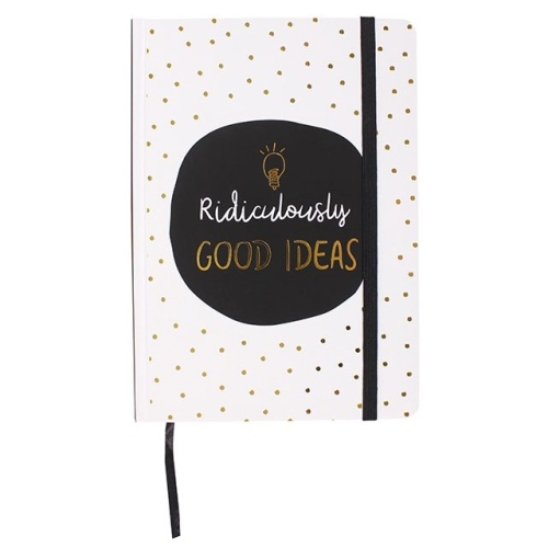 'ridiculously good ideas' notebook