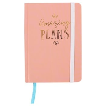 Amazing Plans Notebook