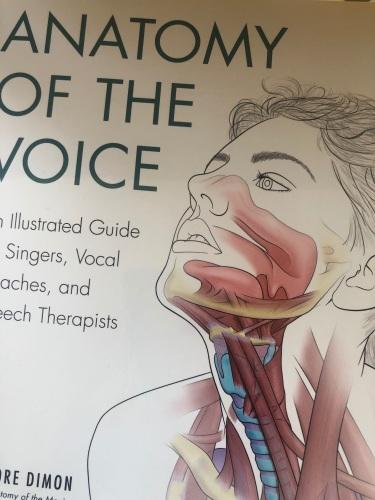 Anatomy of Lorraine Ansell Voice