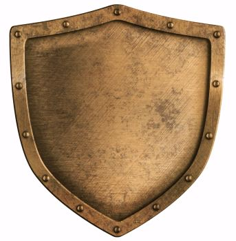 Blog Post - Shield