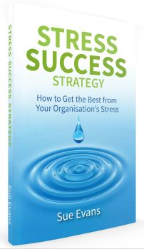Stress Success Cover 3D