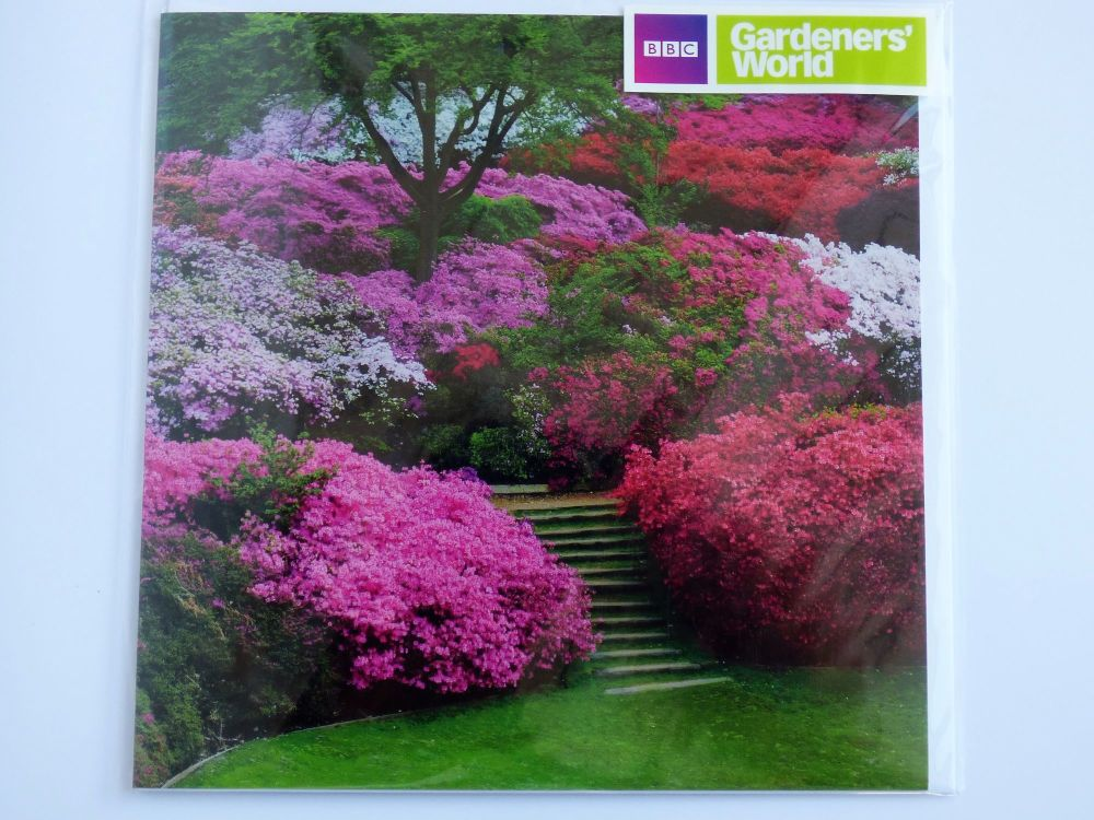 Gardeners World - The Punch Bowl at Virginia Water