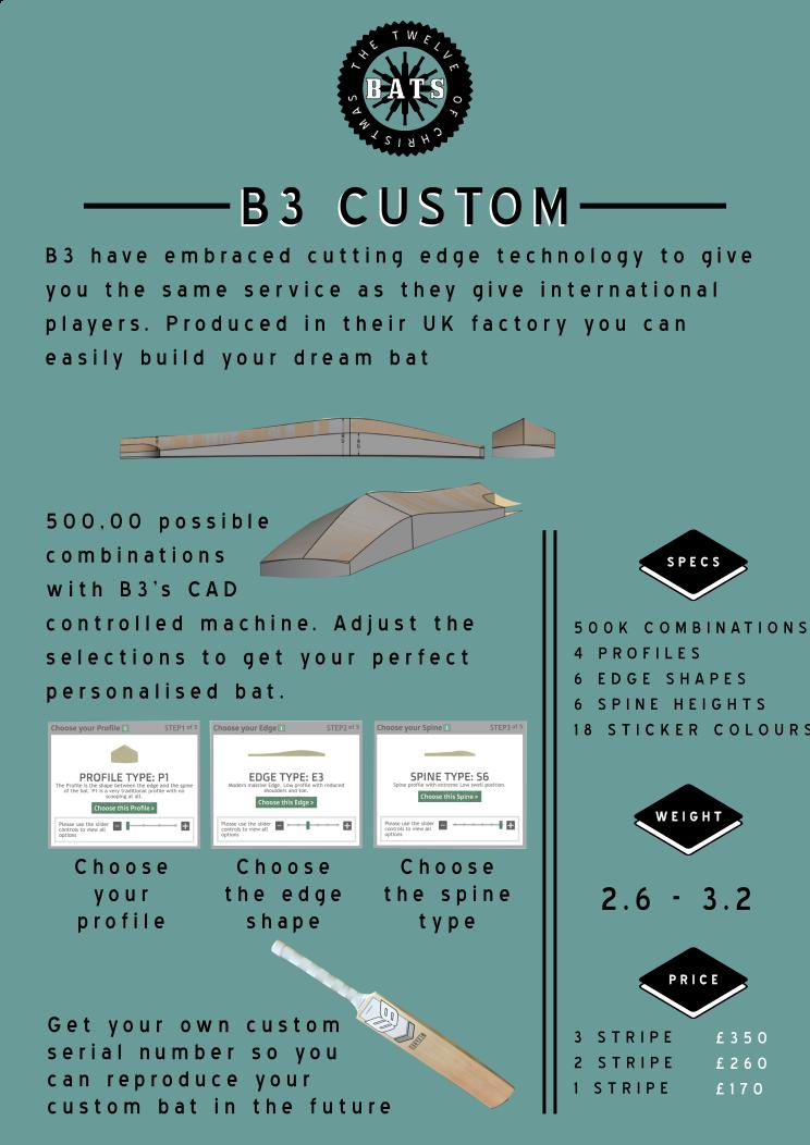 12 bats b3