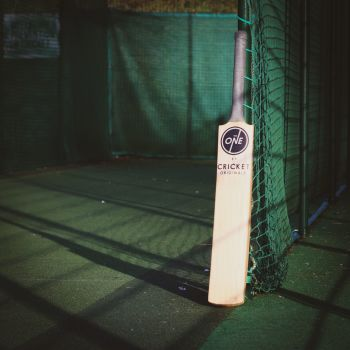 The One Cricket Bat