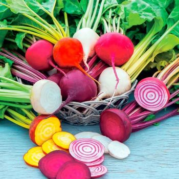 mixed beetroot -pre order delivery  from mid April.