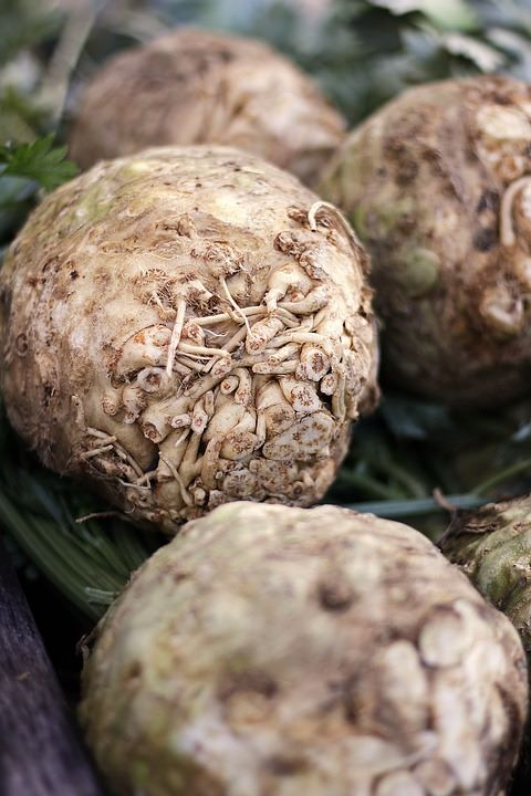 Celeriac - pre order delivery from end of May