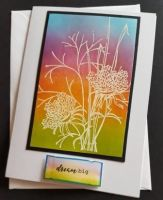 Dream Big.... flowers on a rainbow coloured 7x5in white card