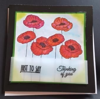 Poppies Just to say thinking of you square card