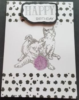 "Happy Birthday Cats and wool 7"" x 5"" card"