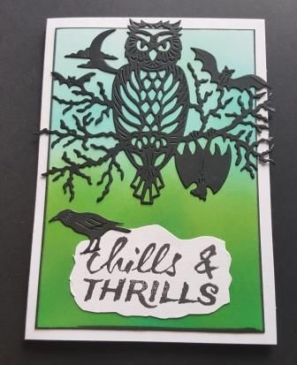 GC 2019 - Halloween - Chills n Thrills owl on branch on hc bg c6 card - RE,