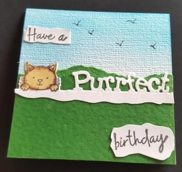 GC 2019 - Birthdays - Have a purrfect birthday cat looking over fence 4in c