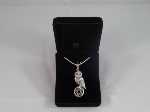 silver owl on pentagram with 18 inch silver chain and giftbox