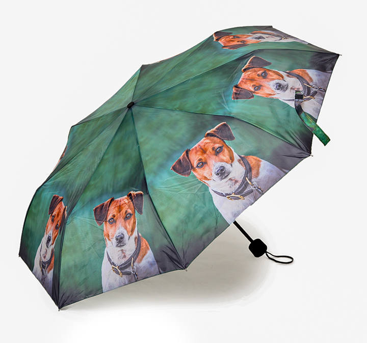 dog and horse umbrellas all proceeds to SOI DOGS