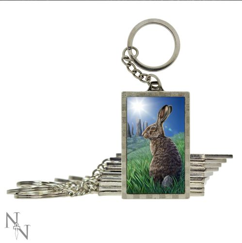 solstice keyring double side 3d you wont believe how detailed this image is