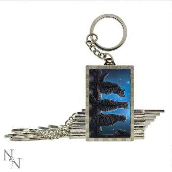 wish upon a star keyring double side 3d you wont believe how detailed this image is!