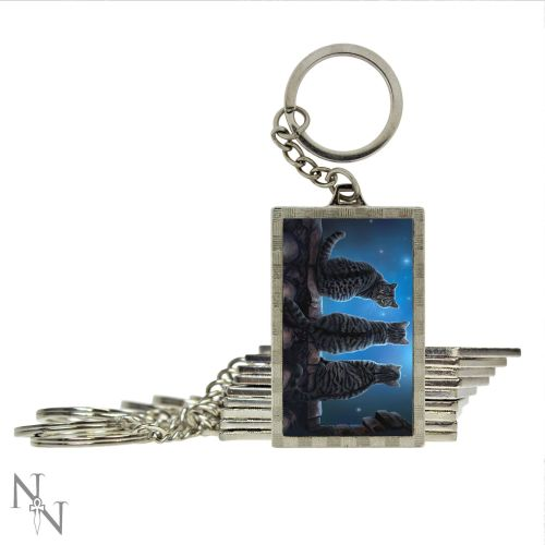 wish upon a star keyring double side 3d you wont believe how detailed this