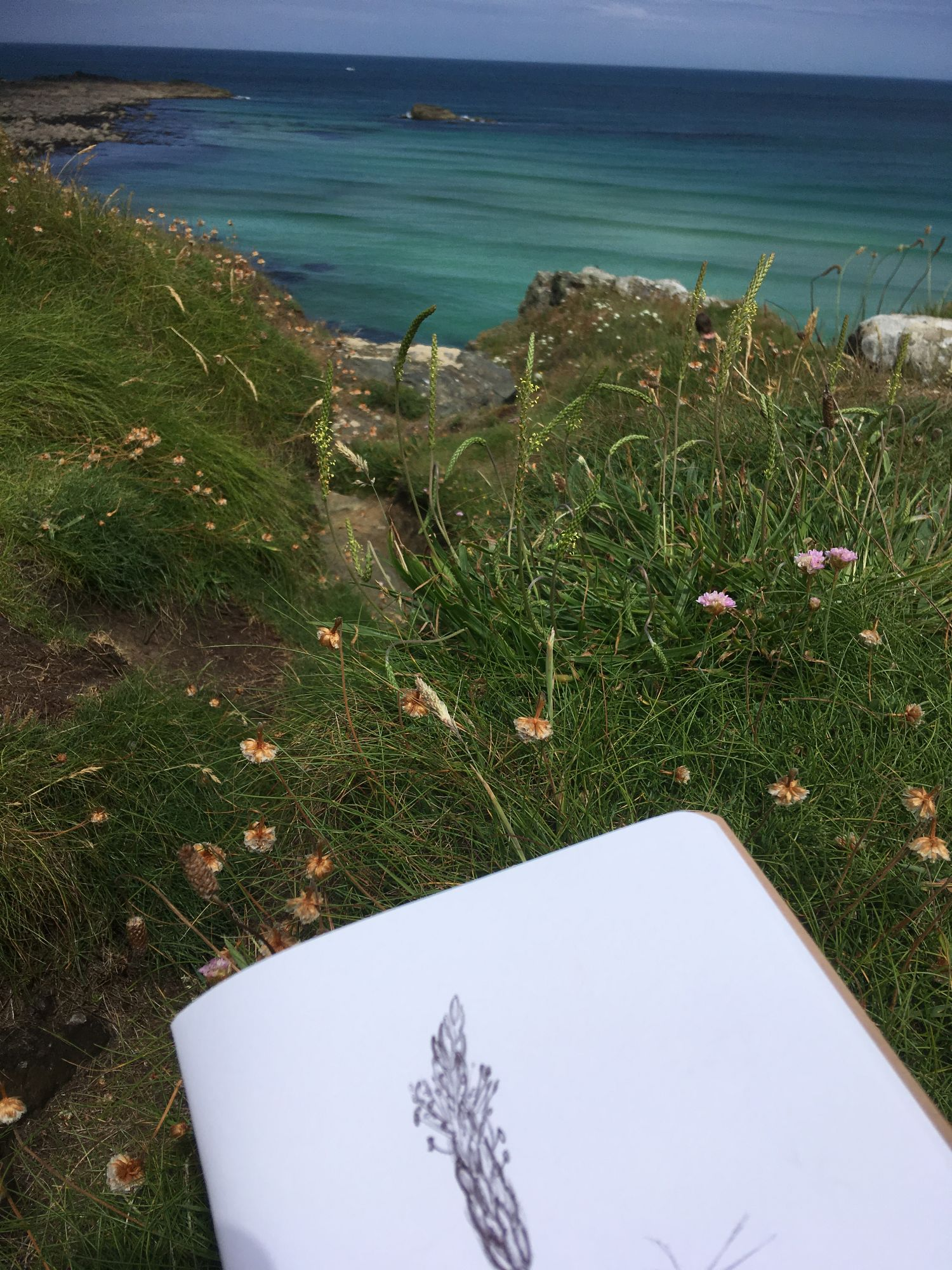 outdoor drawing sea