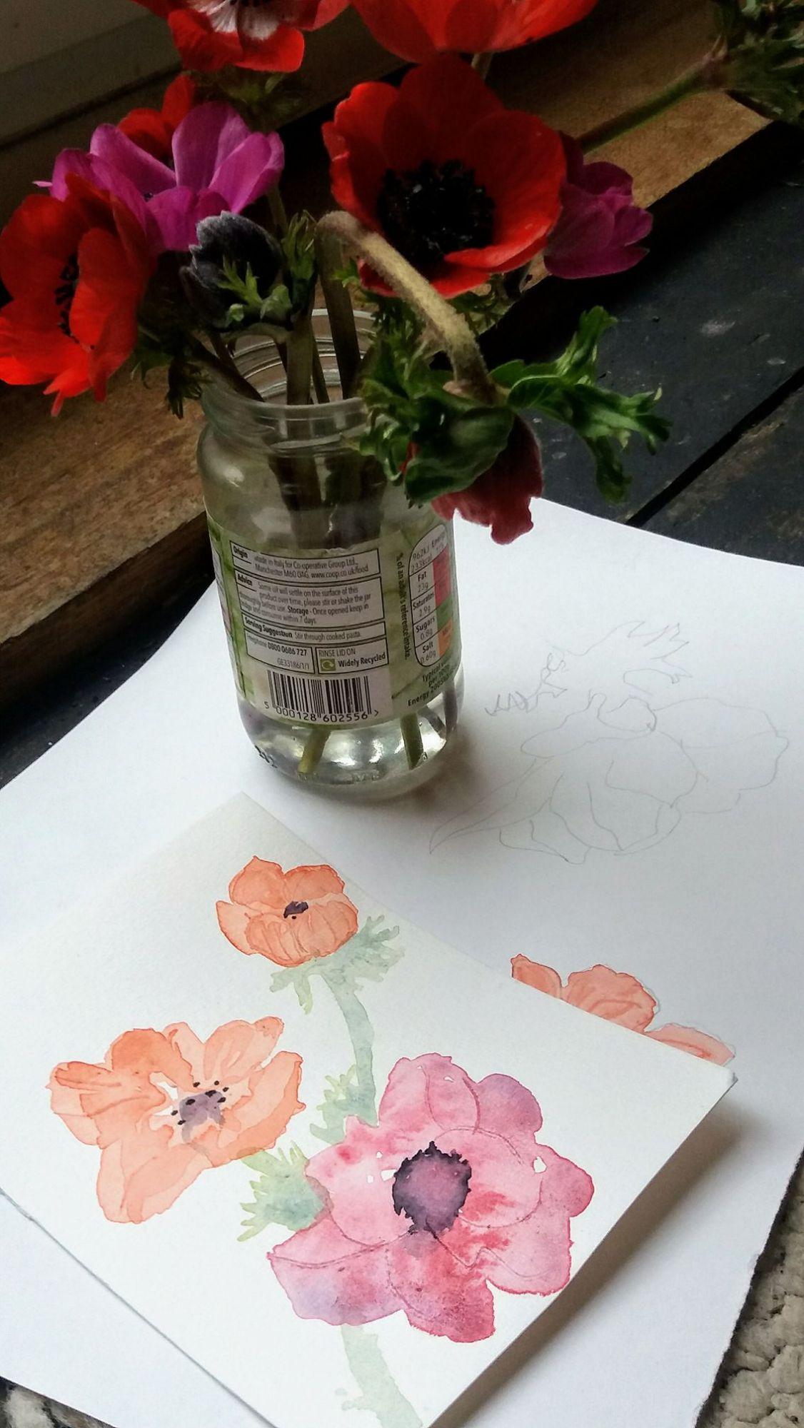 watercolour anenomae