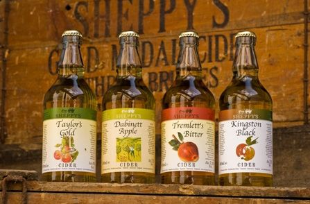 Sheppys Cider Farm