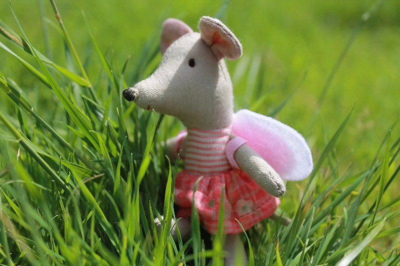 Cute maileg mouse, little sister mouse