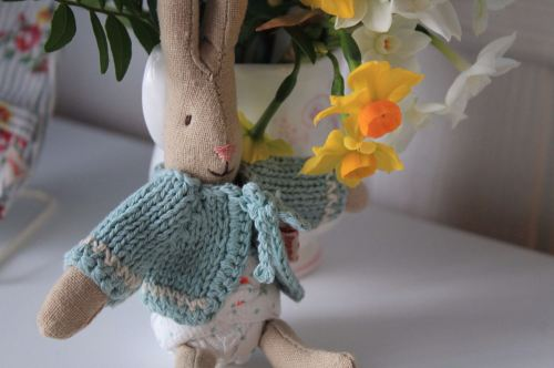 Micro Rabbit with Blue Cardigan