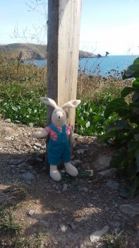 Moulin roty on beach