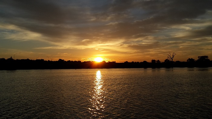 Samphire cove 1