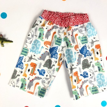 Boys Dinosaur Trousers