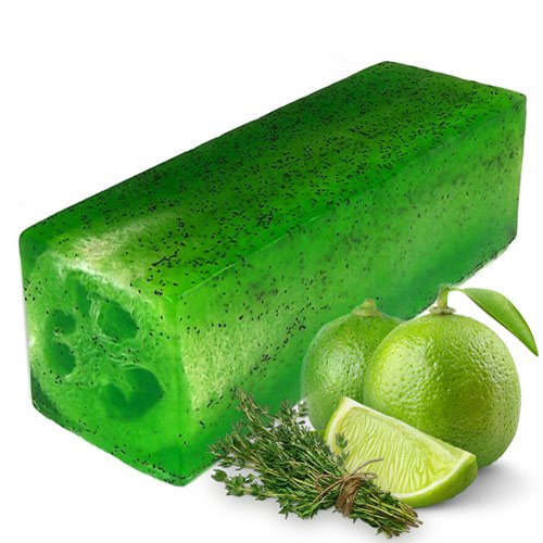 Lime & Thyme Loofah Soap