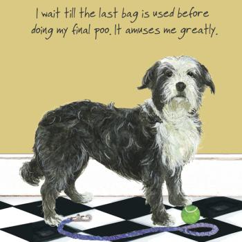 Open / Blank Dog Walk Greeting Card - Final Poo