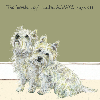 Open / Blank West Highland Terriers Greeting Card - Double Beg