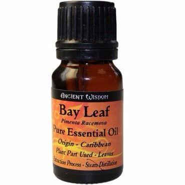10ml Bay Leaf Essential Oil - Inc FREE P&P