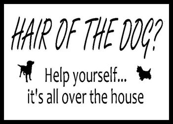 Hair Of The Dog? Help Yourself... Printed Typography Quote