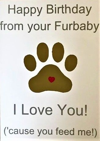 Happy Birthday from your Furbaby Card - Handmade Greeting Card