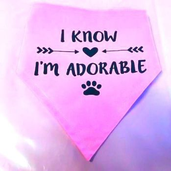 Handmade Adjustable I KNOW, I'M ADORABLE Dog Bandana - Various Sizes