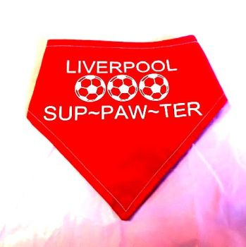 Handmade Adjustable ADD YOUR TEAM RED SUP-PAW-TER Dog Bandana
