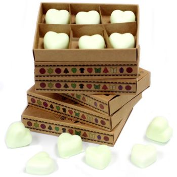 Box of 6 Apple Spice Luxury Soy Wax Melts