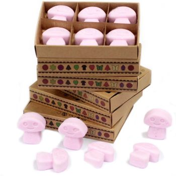 Box of 6 Ylang Ylang Luxury Soy Wax Melts