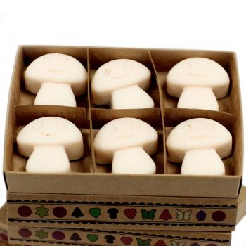 Box of 6 Vanilla Nutmeg Luxury Soy Wax Melts