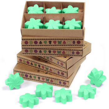 Box of 6 Hidden Garden Luxury Soy Wax Melts