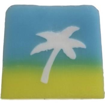 Coconut Handmade Soap