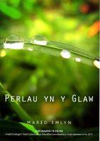 Perlau Yn Y Glaw - Mared Emlyn