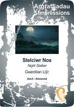 Night Stalker - Stelciwr Nos - Gwenllian Llyr
