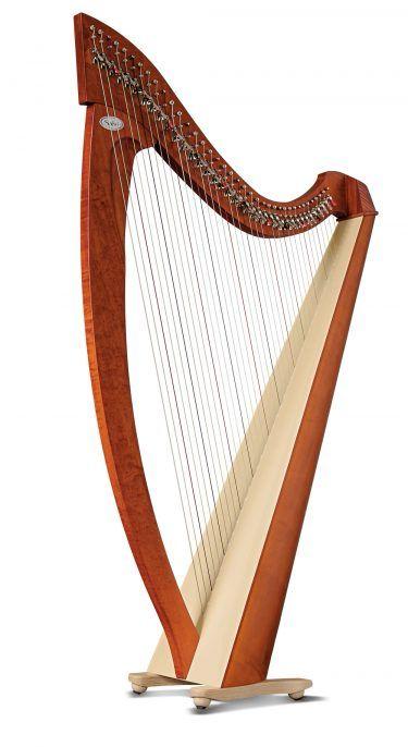 Titan 38 String