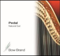 <!-- 002 -->Above 1st Octave & 1st Octave Pedal Standard Gut