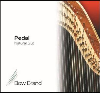 Above 1st Octave & 1st Octave Pedal Standard Gut