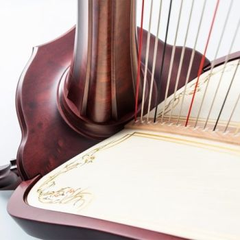 47 String Pedal Harp - String SET Options