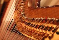 Pedal Harp Strings