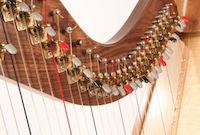 Lever Harp Strings